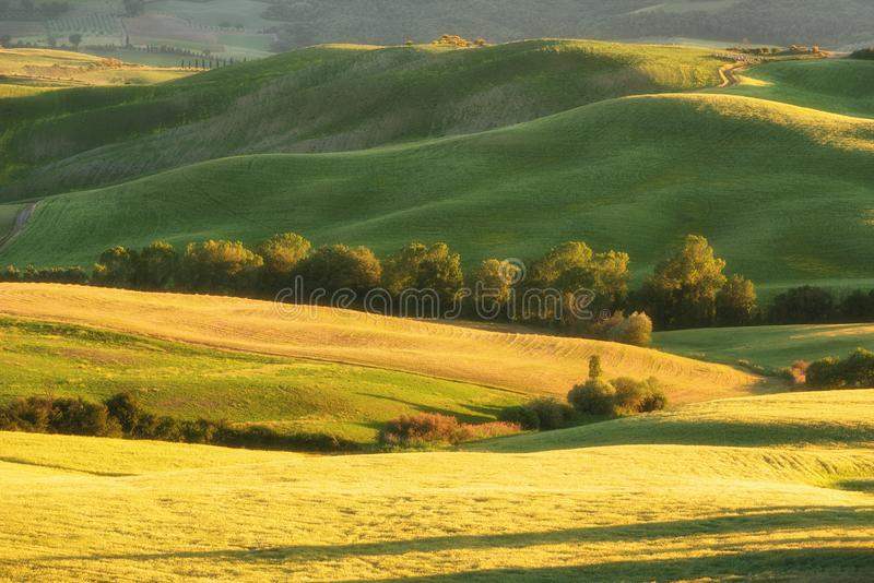 Magnificent spring rural landscape. Stunning view of tuscan green wave hills, amazing sunlight, beautiful golden fields and meadow stock photo