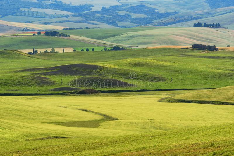 Magnificent spring rural landscape. Stunning view of tuscan green wave hills, amazing sunlight, beautiful golden fields and meadow stock photography