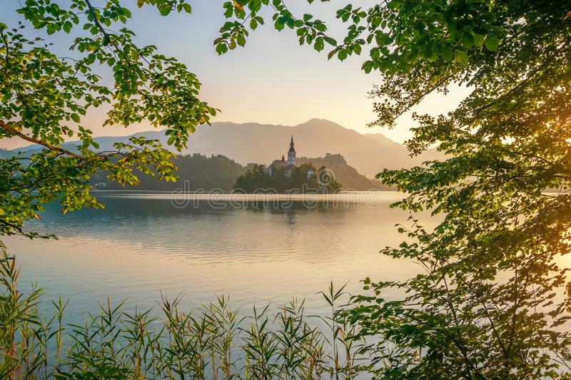 Magnificent sunrise over Lake Bled, Slovenia at summer morning. Bled Island with pilgrimage church of the Assumption of Mary in natural frame with branches stock photography