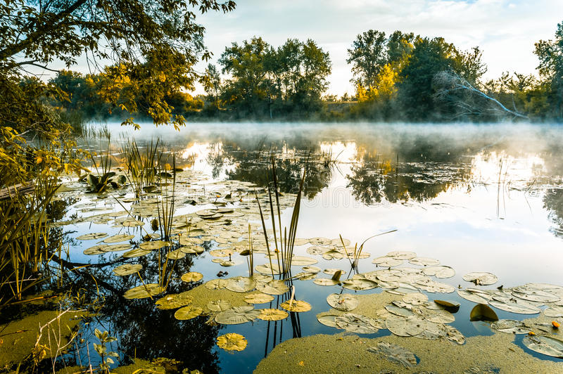 A magnificent sunrise on a river. With a mist over the water stock images