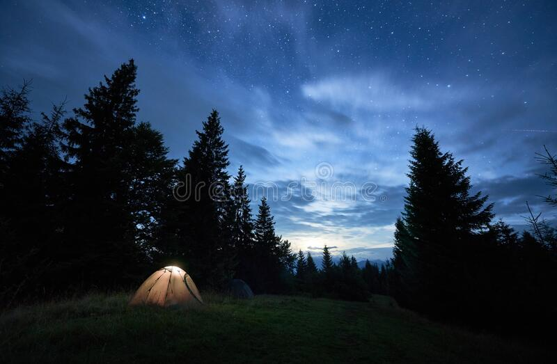 Night camping in forest under beautiful starry sky. royalty free stock photography
