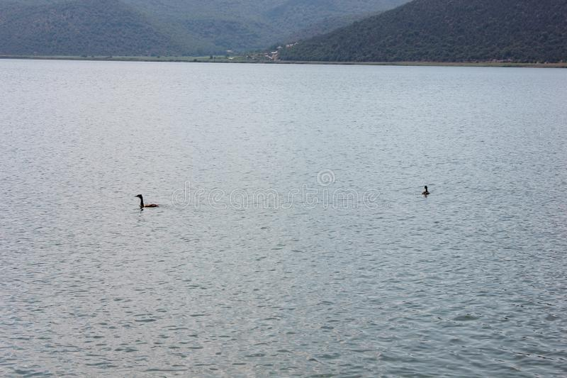 Magnificent view at Prespes Lake Florina Greece. Europe stock photography