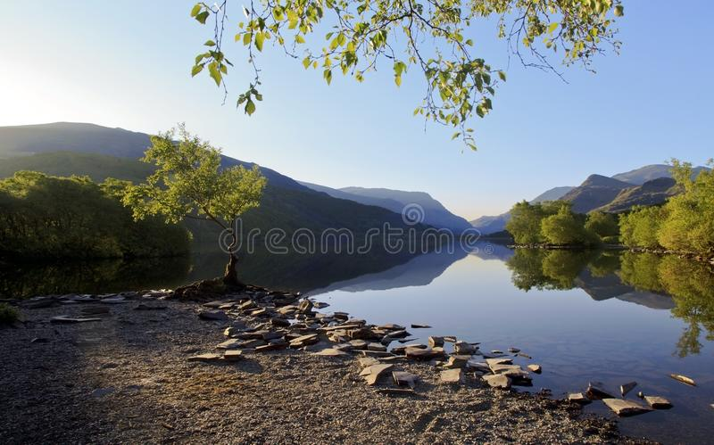 Beautiful Welsh Mountains reflected in a still waters of lake Llyn Padarn at Lone Tree Llan Beris Wales. Magnificent Welsh Mountains and trees reflected in a royalty free stock photo