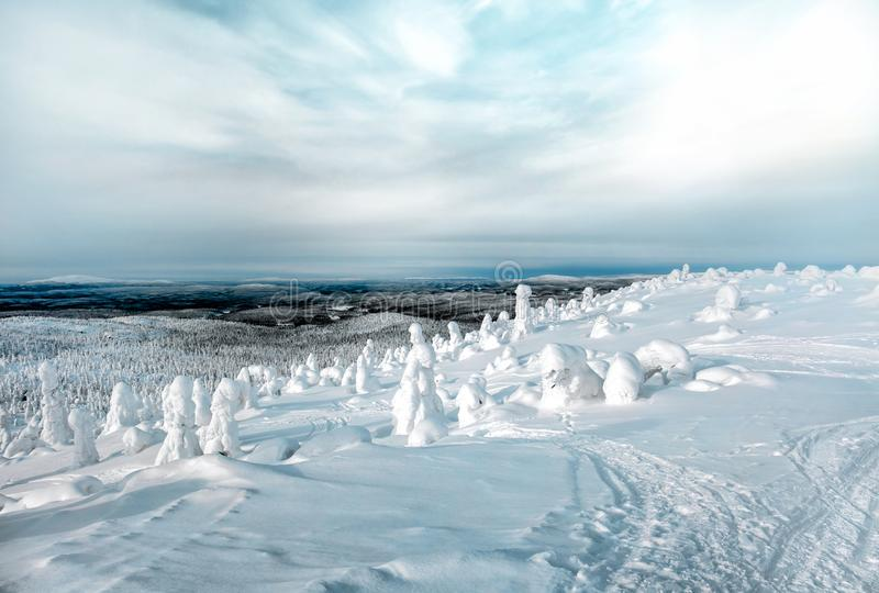 Magnificent winter landscape in the north of Karelia i royalty free stock photo