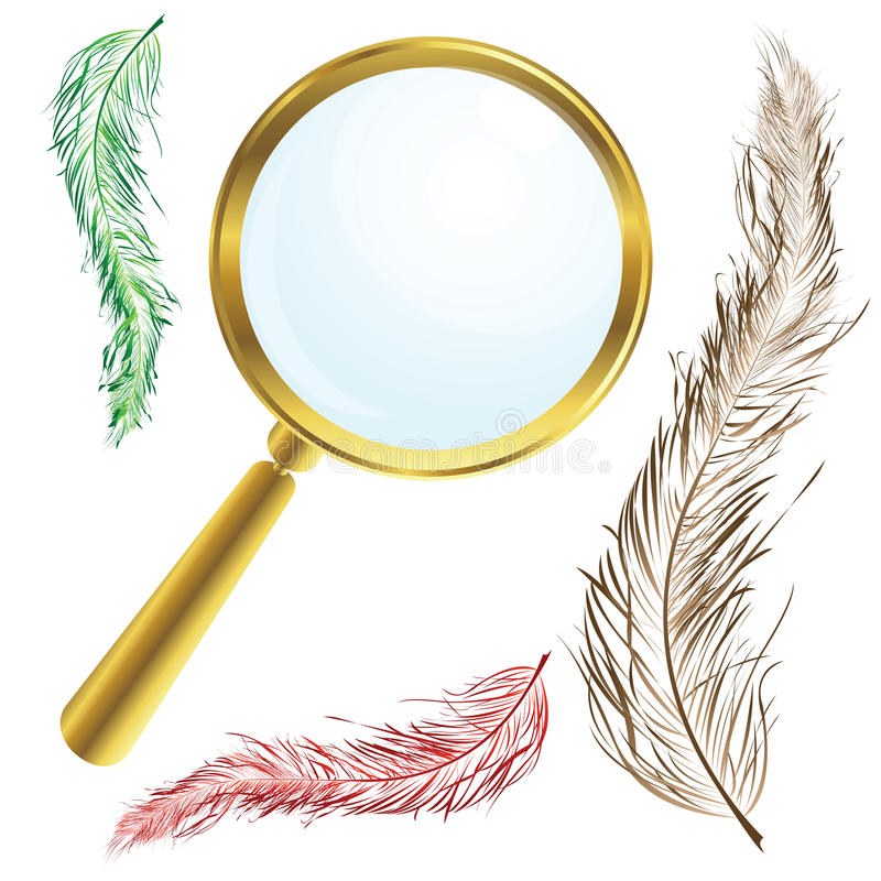 Download Magnifing glass stock vector. Image of shape, magnify - 12660107