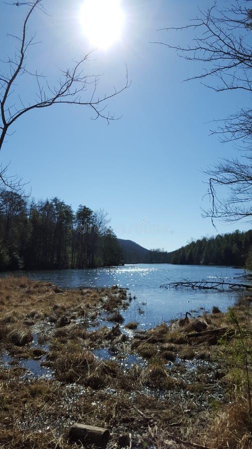 Download Magnifique, Beauté De La Vie Photo stock - Image du montagnes, beauté: 87702870