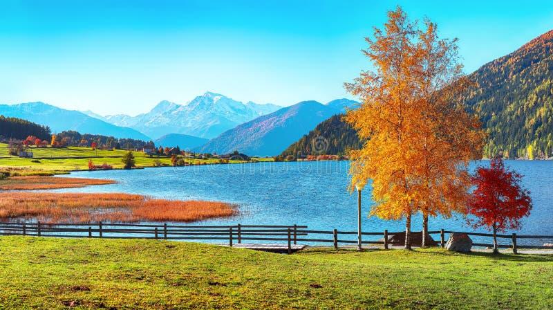 Magnifique panorama d'automne sur le lac de Haidersee Lago della Muta avec le pic d'Ortler en arrière-plan images libres de droits