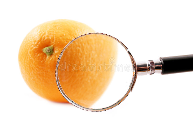 Magnifying royalty free stock image