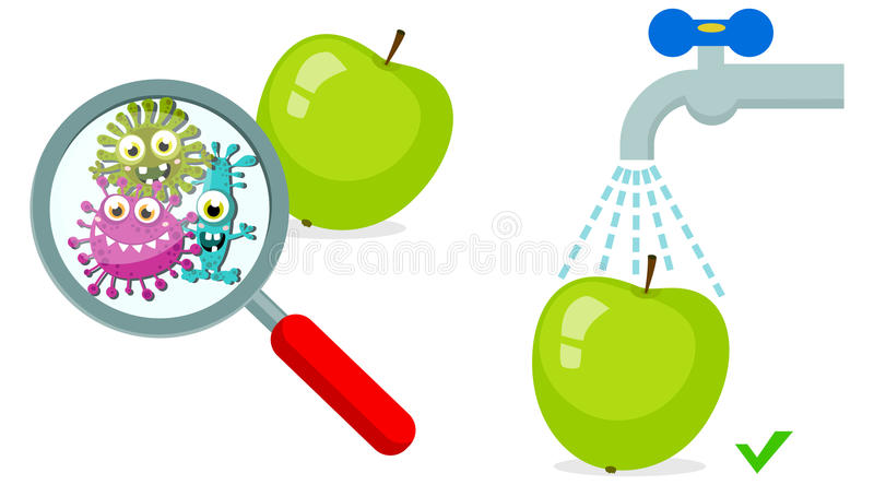 Magnifying Glass look through Germ, Bacteria, Virus, Microbe, Pathogen Characters on dirty green apple. Cartoon, fun for children characters. Washed apple with stock illustration