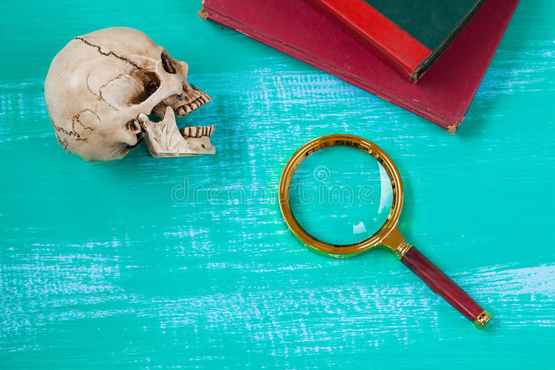 Magnifying glass and skull royalty free stock photos