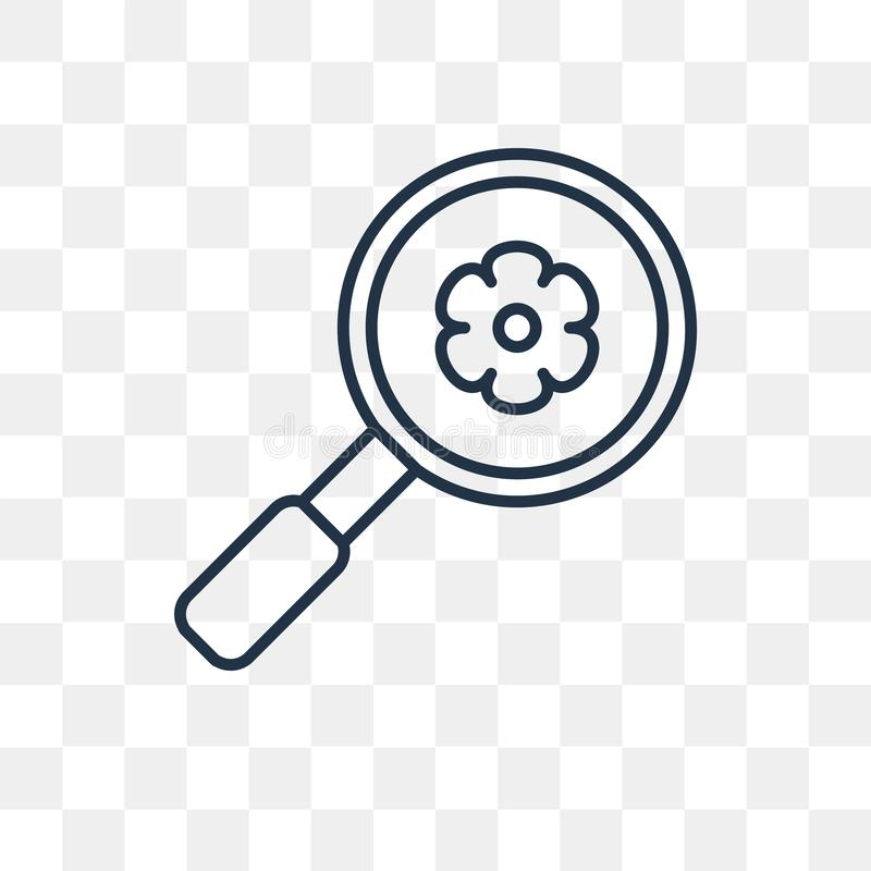 Magnifying glass vector icon isolated on transparent background, linear Magnifying glass transparency concept can be used web and. Magnifying glass vector royalty free illustration