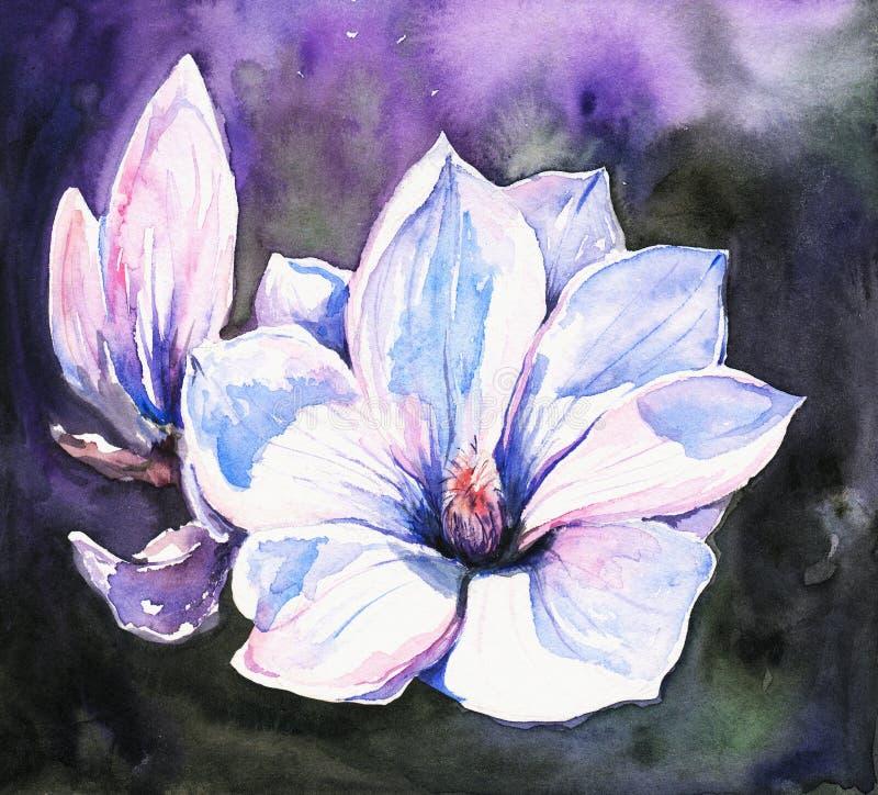 Magnolia stock illustratie