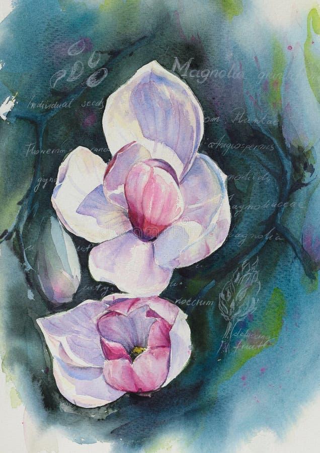 Magnolia stock de ilustración