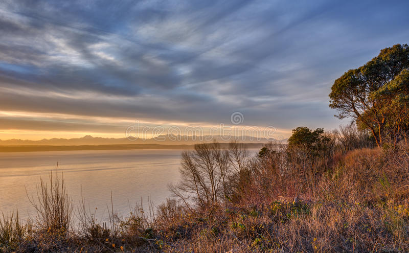 Spring Brush on Magnolia Bluff in Seattle, Washington at Sunset. Early Spring Foliage Burns Red in the Late Evening Sun royalty free stock photography