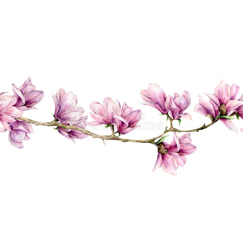 Magnolia de la acuarela y frontera inconsútil de las hojas Flores pintadas a mano y hojas verdes en la rama aislada en blanco stock de ilustración