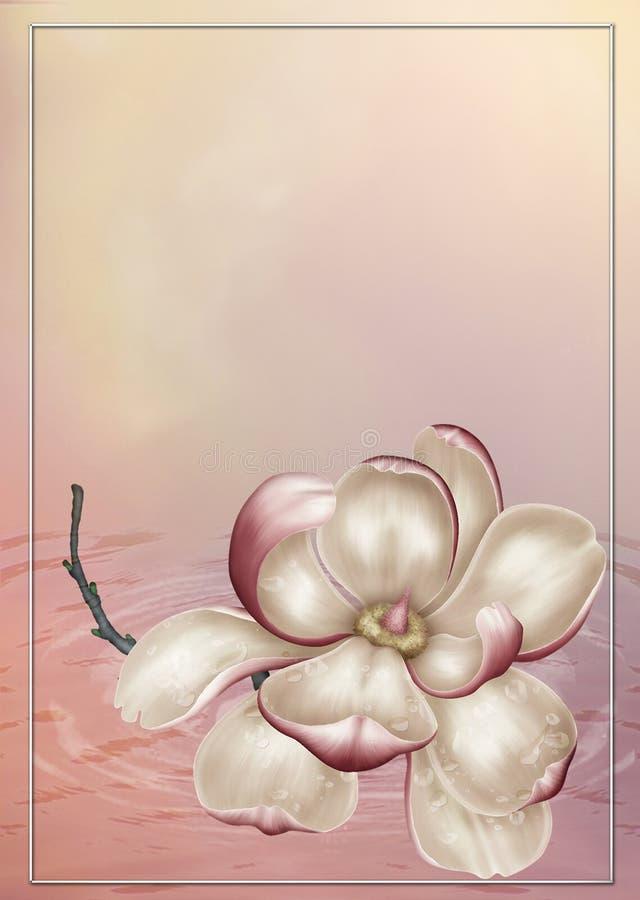 Magnolia en color de rosa stock de ilustración