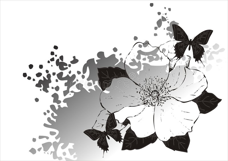 Magnolia en vlinder royalty-vrije illustratie