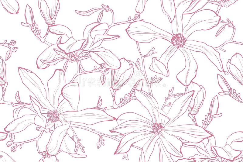 Magnolia flower vector illustration. Seamless pattern with pink flowers on a white background. vector illustration