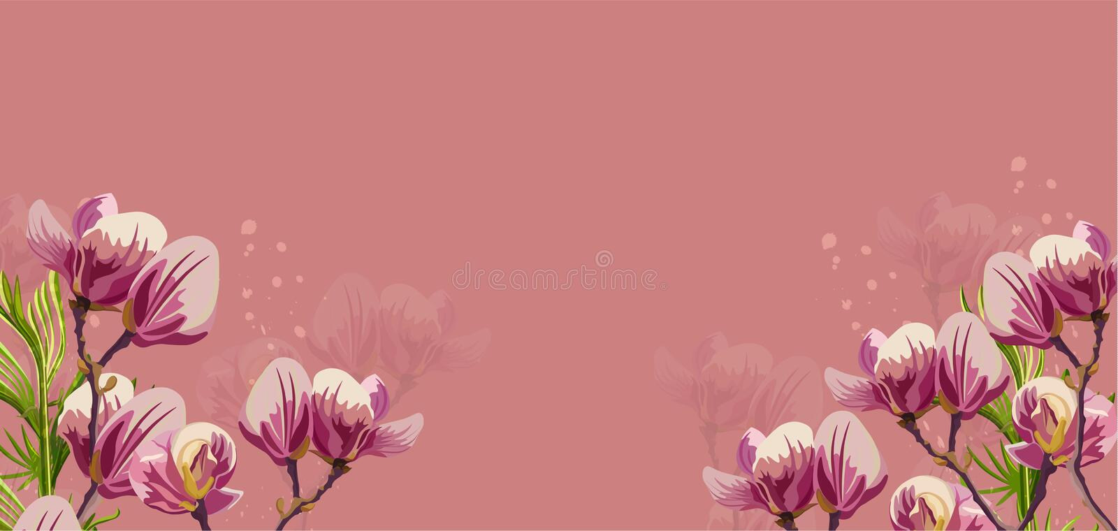 Magnolia flowers Vector on pink background. Beautiful card templates. Magnolia flowers Vector on pink background. Beautiful card template vector illustration