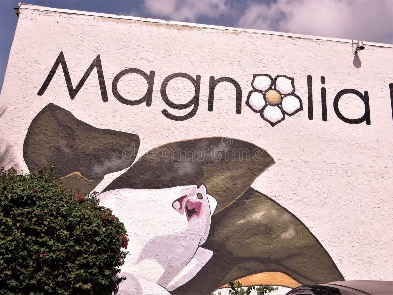 Magnolia na budynku fotografia stock