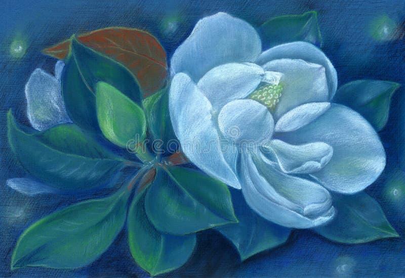 Magnolia Pastel de dibujo Flores en el árbol wallpaper Árbol de tulipán ilustración del vector