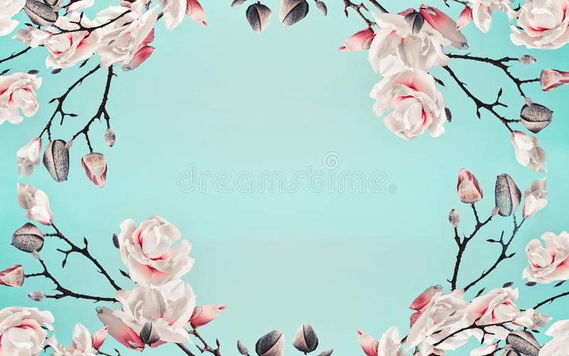 Magnolia pink blossom flowers frame at light blue turquoise background. Floral border. Pattern of branch with flowers. Spring. Template or layout. Pastel color royalty free stock image