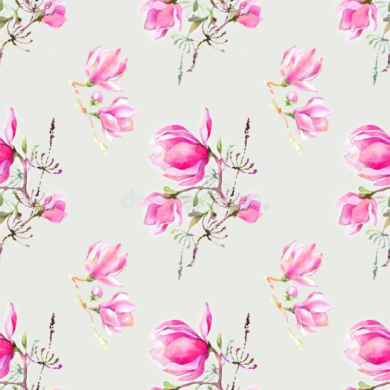 Magnolia rosada por la acuarela ilustración del vector
