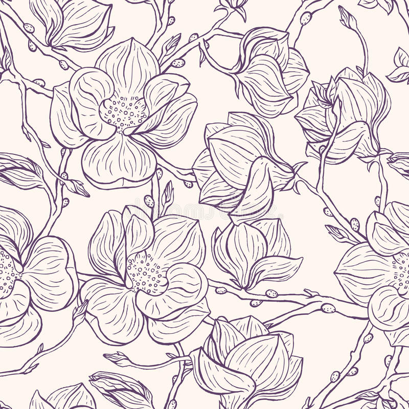 Magnolia's royalty-vrije illustratie