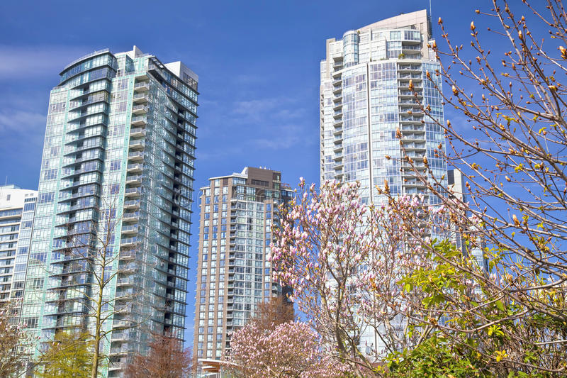 Magnolia's en Flatgebouwen met koopflats royalty-vrije stock fotografie