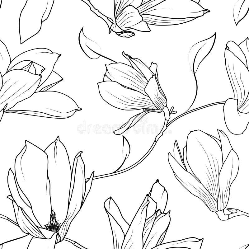 Magnolia sakura flowers branch seamless pattern stock illustration