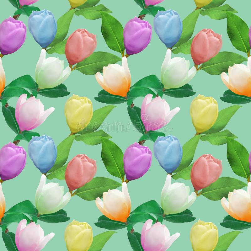 Magnolia Textura inconsútil del modelo de flores Fondo floral, collage de la foto ilustración del vector