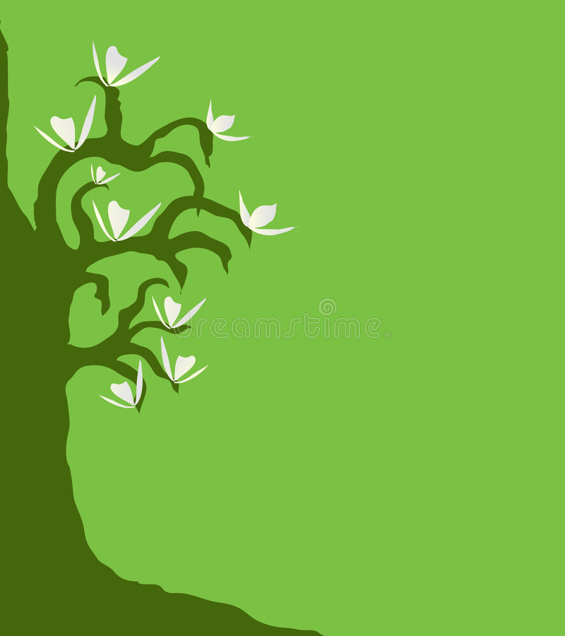 Magnolia Tree 2. Magnolia tree with white flowers against a green background (vector