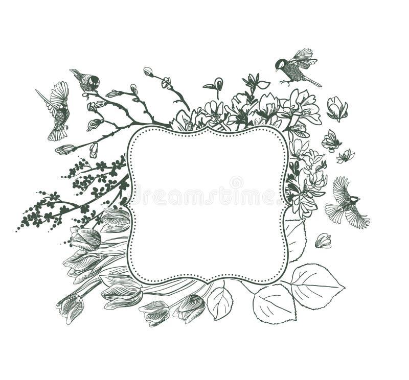 Magnolia victorian de los pájaros de los pájaros del fondo del vector del capítulo libre illustration