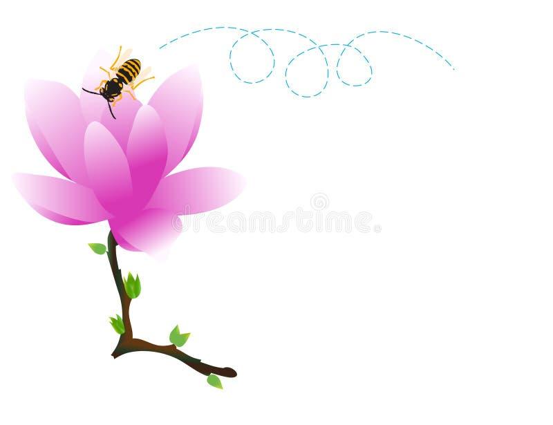 Magnolia y abeja ilustración del vector