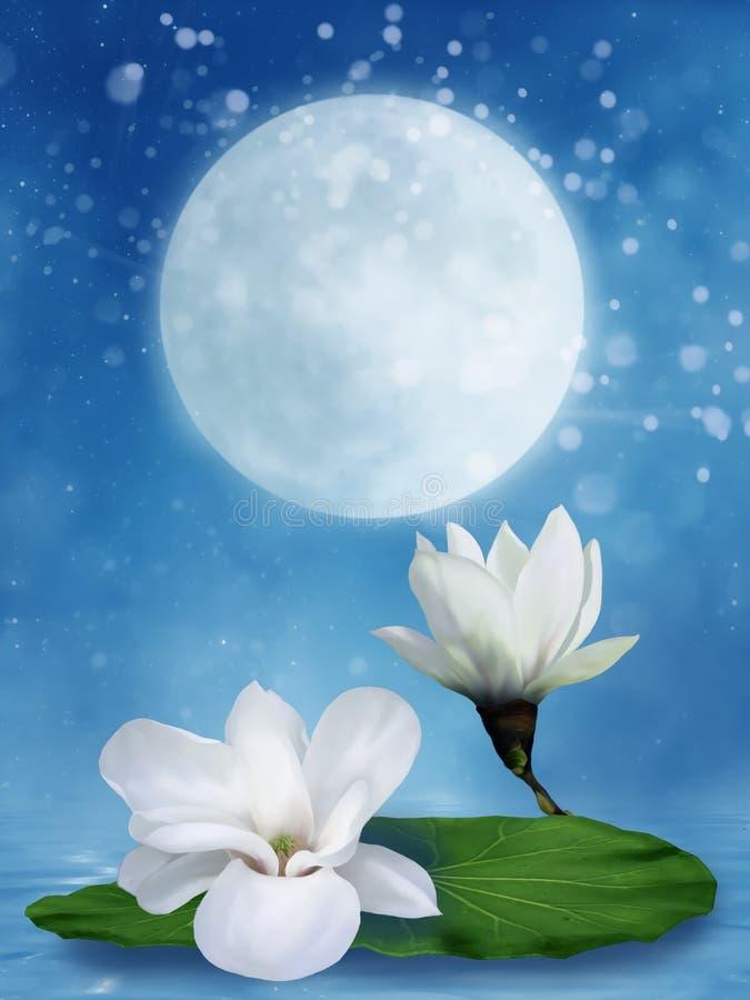 Magnolias blanches illustration de vecteur