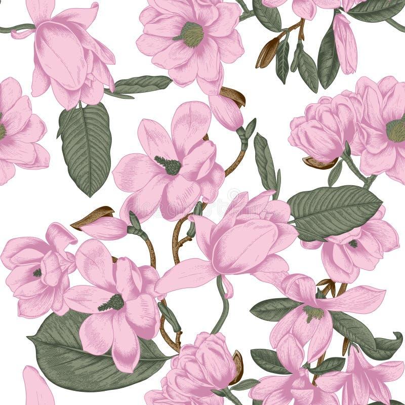 magnolias Fiori Priorità bassa senza giunte di vettore con i fiori botanica Sorgente Alberi di fioritura Modello di verdure Giard illustrazione vettoriale