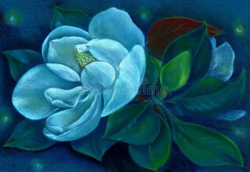 magnolie Zeichnender Pastell Blumen auf dem Baum tapete Hohe Abbildung der Auflösung 3D auf Weiß stock abbildung