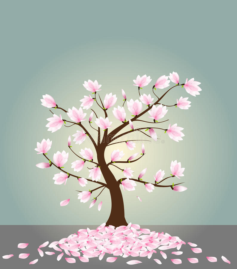 Magnoliebaum lizenzfreie abbildung