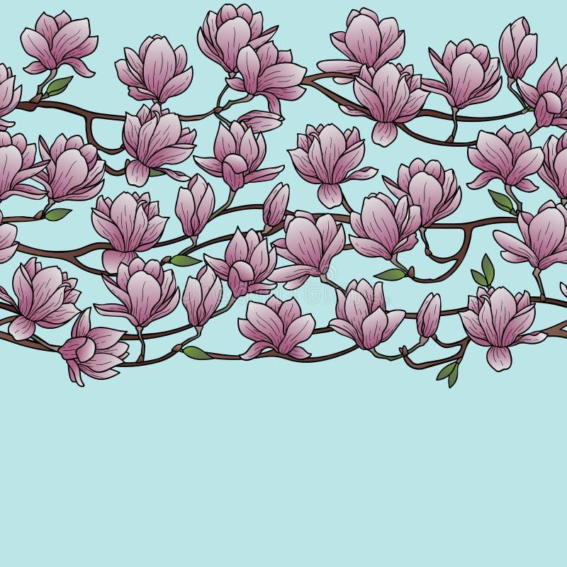 Magnolien-Frühlings-nahtlose Grenze vektor abbildung