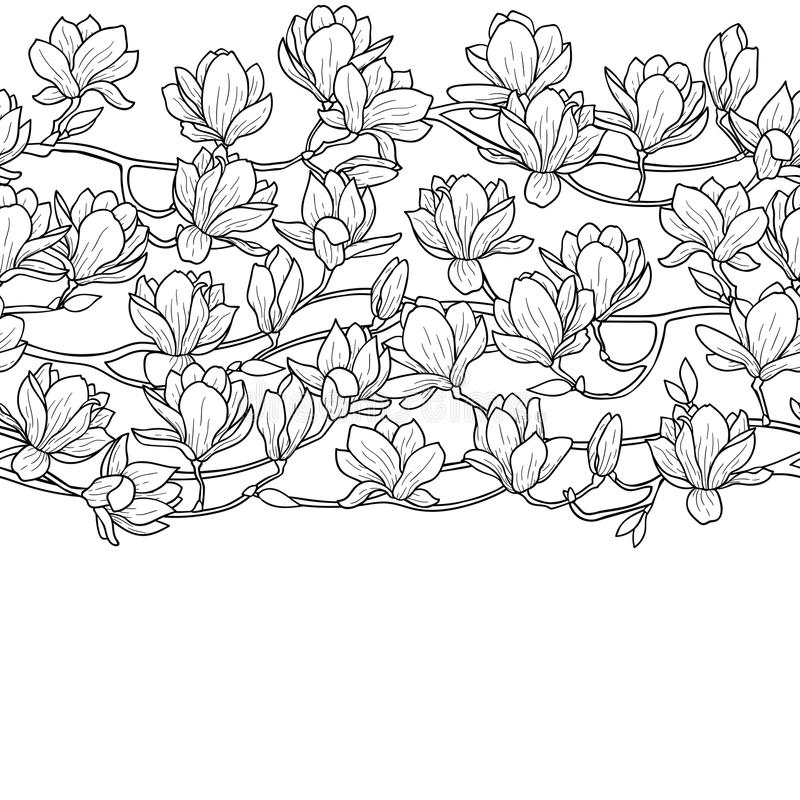 Magnolien-Frühlings-nahtlose Grenze lizenzfreie abbildung