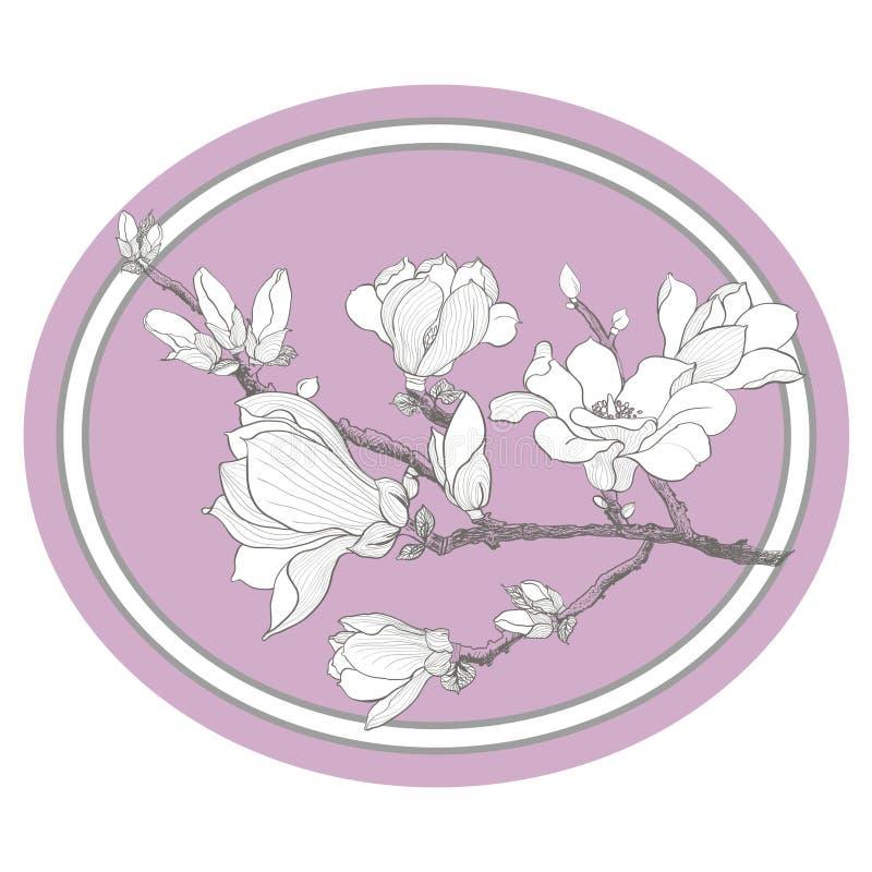 Magnolii gałąź royalty ilustracja