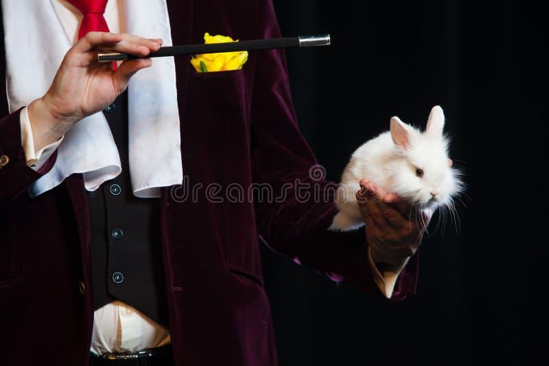 Mago con el conejo, hombre del juglar, persona divertida, magia negra, ilusión en un fondo negro imagen de archivo