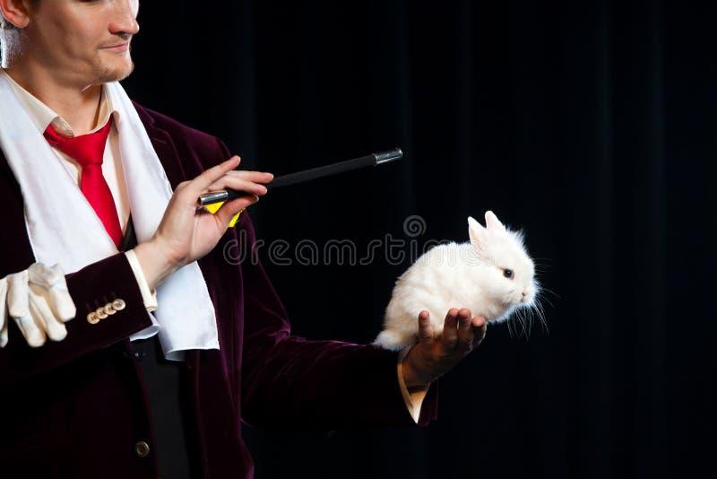 Mago con el conejo, hombre del juglar, persona divertida, magia negra, ilusión en un fondo negro fotos de archivo libres de regalías