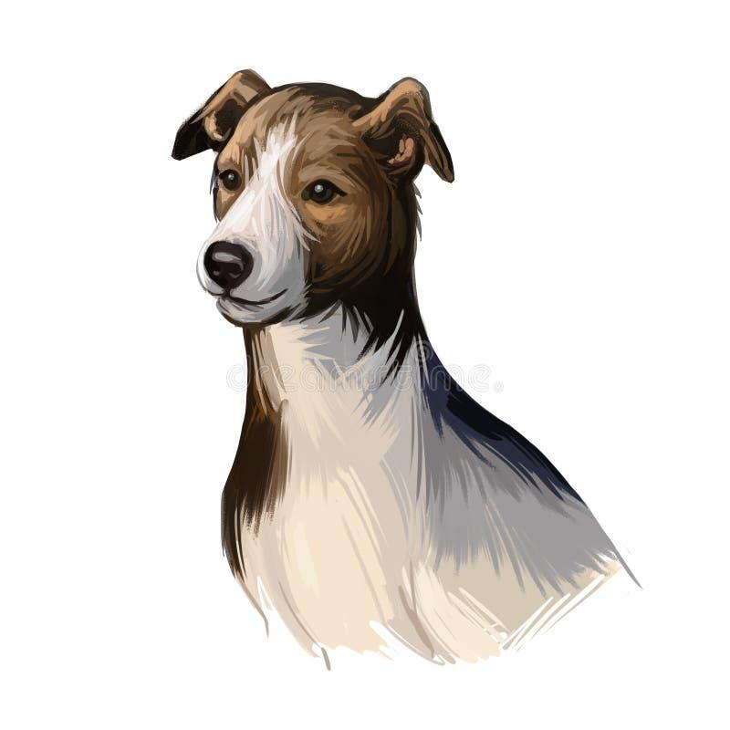 Magyar agar cachorro perro mirando el arte digital canino. Imperio austro-húngaro originó mascota, mamífero domesticado, canis  ilustración del vector