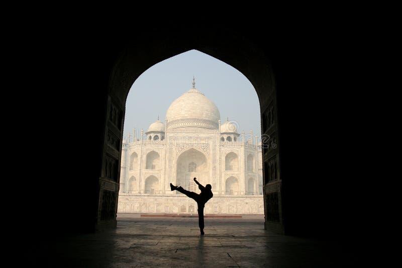 mahal θέα taj ασυνήθιστη στοκ φωτογραφίες με δικαίωμα ελεύθερης χρήσης