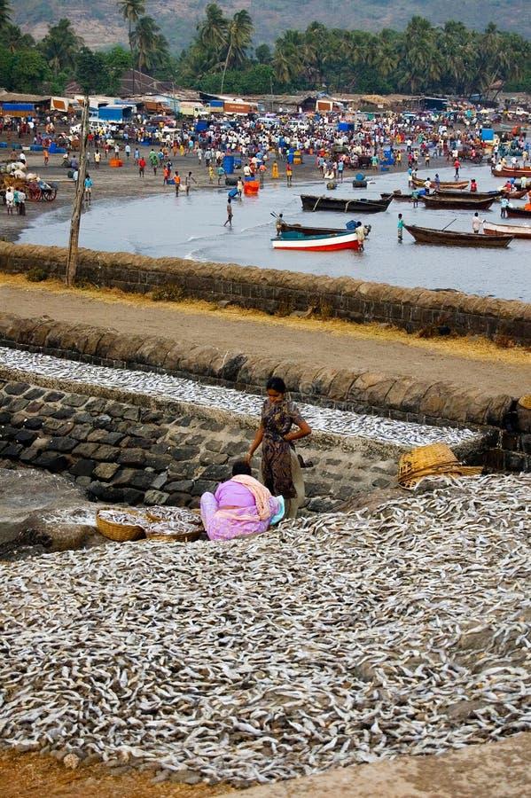 Maharashtra, India, Februari 2010, het vissers` s dok, Shrivardhan, Raigad-district stock fotografie