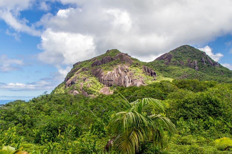 Mahe Seychelles, Morne Seychellois park narodowy - zdjęcia stock