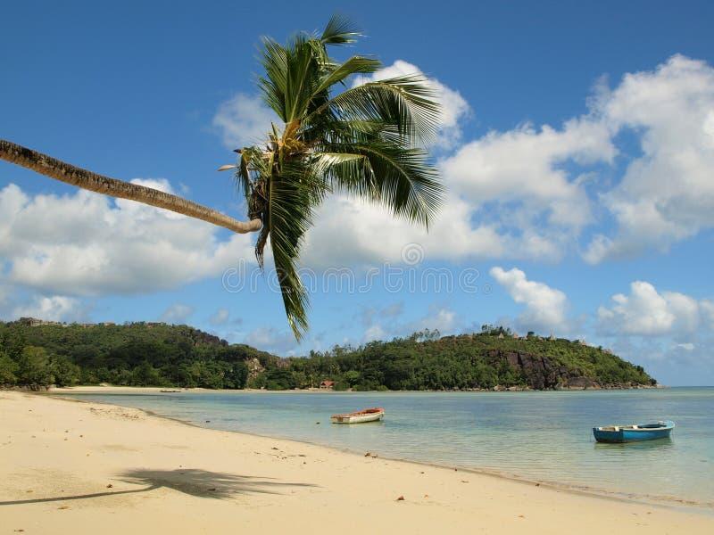 Mahe wyspa, Seychelles zdjęcia stock