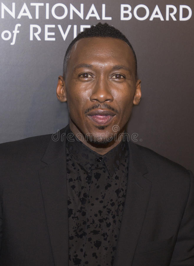 Mahershala Ali. Actor Mahershala Ali arrives for the National Board of Review Awards Gala at Cipriani 42nd Street on January 4, 2017. Ali was part of the winning royalty free stock images