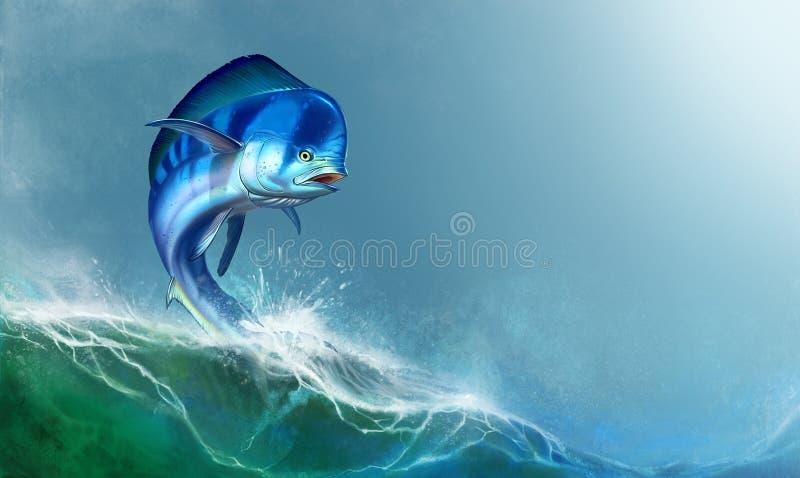 Mahi mahi or dolphin fish on white. vector illustration